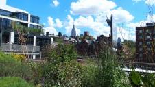 High Line - NYC - été 2015